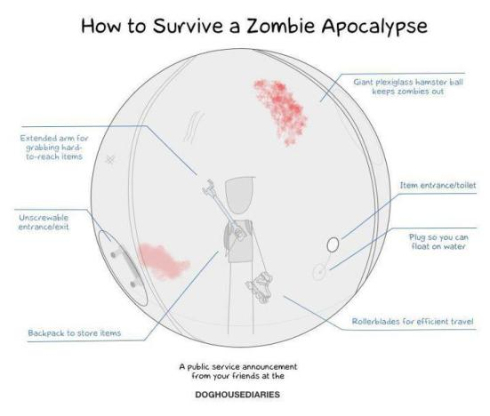 how to survive a zombie apoc inside a ball